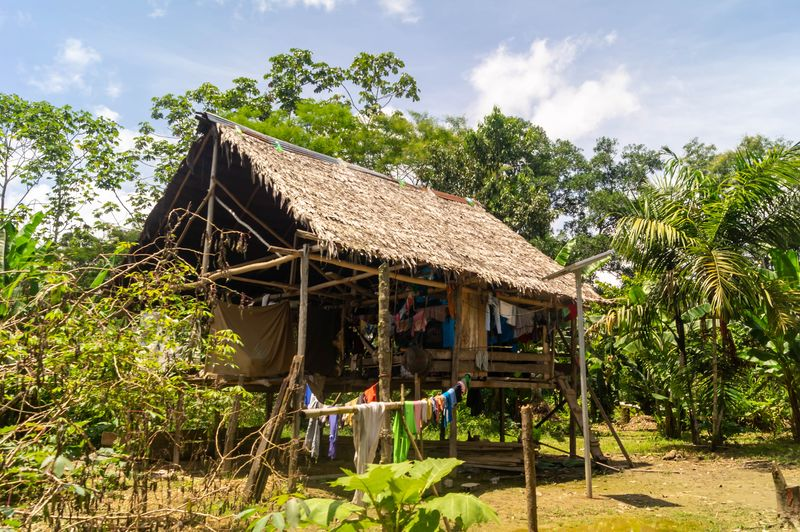 Hause Peru Holiday Holidays Jungle Old House Tree Agriculture Tropical Climate Sky Architecture