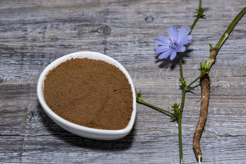 Chicory flower and powder of instant chicory on wooden background. Cichorium intybus. Chicory Coffee Chicory Flower Close-up Directly Above Drink Flower Flower Head Flowering Plant Food Food And Drink Freshness Herb High Angle View Indoors  Kitchen Utensil Leaf Nature No People Plant Plant Part Still Life Table Tea Wood - Material