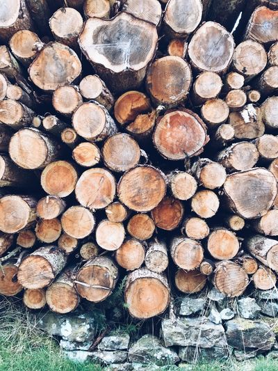 A pile of freshly cut trees stacked up in Bilsdale, UK Close-up Deforestation Environmental Issues Firewood Forestry Industry Heap Large Group Of Objects Log Lumber Industry No People Pile Stack Textured  Timber Wood Wood - Material Woodpile