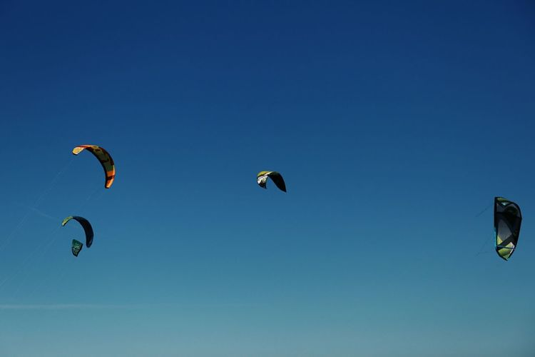 All under blue sky Flying Mid-air Leisure Activity Extreme Sports Sport Wind Sky Outdoors Adventure Nature The Weekend On EyeEm Beach Kitesurfing Kite Aesthetics Sommergefühle Mix Yourself A Good Time Summer Exploratorium