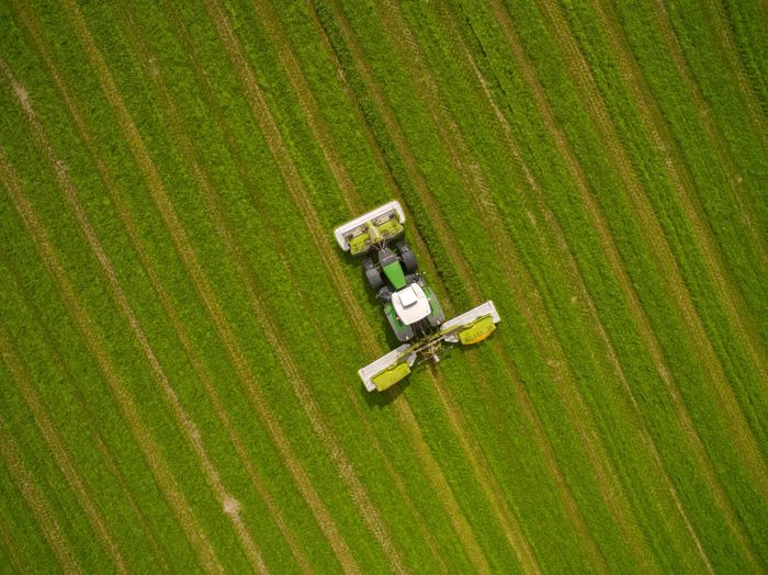 aerial view of a tractor on a green fresh grass field - tractor mowing a green fresh grass field on a sunny day - top view - droneshot Tractor Mowing The Grass Dronephotography Drone  Field Land Rural Scene Agriculture Farm Landscape High Angle View Green Color No People Growth Environment Aerial View Crop  Plant Agricultural Machinery Nature Machinery Technology Day Outdoors
