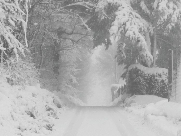 Snow ❄ Porta Inferno🔥 Tree Cold Temperature Winter Snow Weather Fog Nature Snowing Forest Beauty In Nature No People Outdoors Scenics Day Landscape Lasciate Ogne Speranza Voi Chi'intrate. Timeless Adapted To The City Disadapted To The City