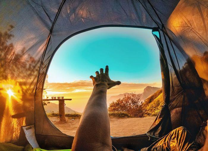 Man seen through glass window during sunset