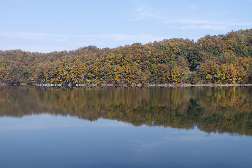 autumn landscape of Busodamak, a beautiful lake located in Okcheon, Chungbuk, South Korea Autumn Autumn Autumn Lake Beauty In Nature Change Day Lake Lake In Autumn Lake In The Morning Lake Reflection Leaf Morning Lake Nature No People Outdoors Reflection Scenics Sky Tranquil Scene Tranquility Tree Water Waterfront
