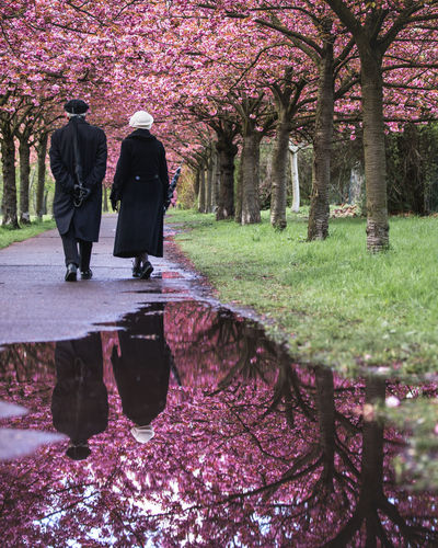 Together Walking Water Tree Two People Women Adult Men Adults Only People Outdoors Togetherness Day Real People Nature Beauty In Nature Flower Elderly Couple