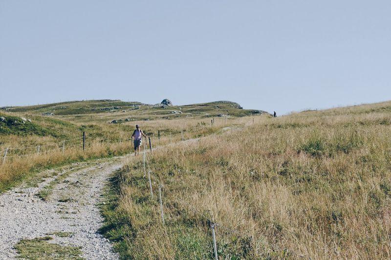 Rear view of people walking in farm against clear sky