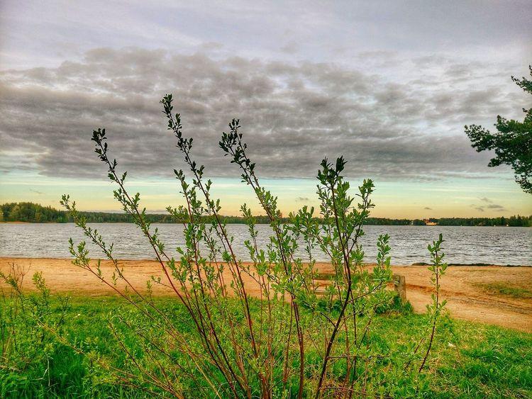 Naturephotography Lake View Nature_collection Nature Beauty Spring Spring Colours Spring 2016 Nature Harmony Lakeview Littoisten Järvi Littoinen