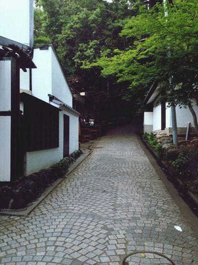 (^.^) Japan Japanese Style