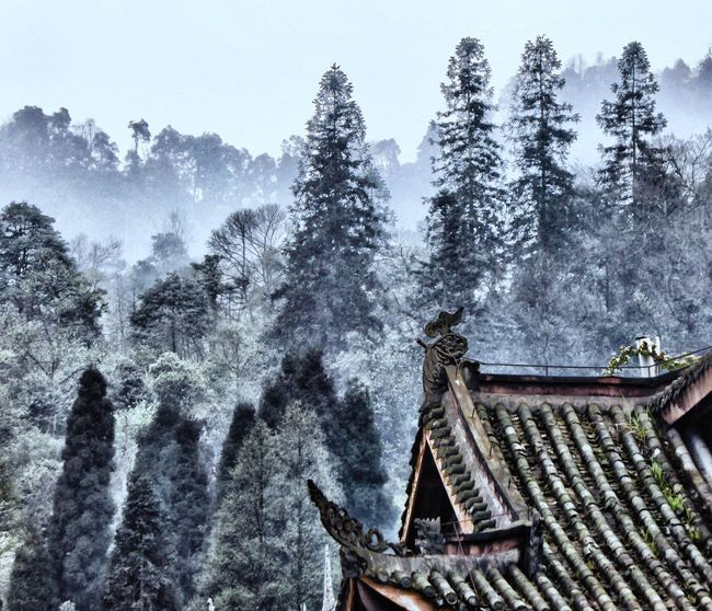 China Nature ALAIN LUC GUENET Landscape Religion Weather Tranquility Remote Cloud China Chinese New Year China Photos Chinese Culture China View Chinese Chinese Garden China In My Eyes Chinatrip Chinese Temple Chinaglaze Chinatour Ying Yang Tao  Taoism TaoistTemple Yin & Yang