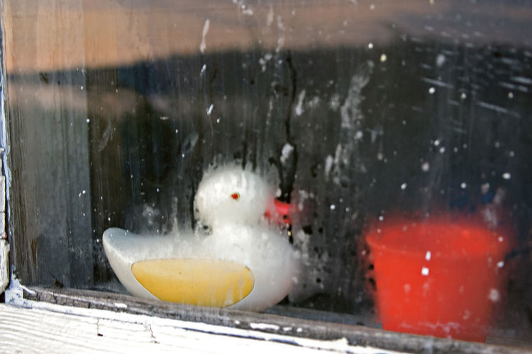 A Rubber Duck In A Sauna A Sauna Evening A Sauna In Finland A View From A Sauna To The Lake A Washing In A Sauna In Finland Close-up Dreeams Memories From Childhood No People Summer Vacation