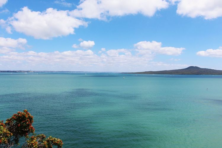 Sea Blue Water Cloud - Sky Social Issues Tourism Travel Destinations Environmental Conservation Travel Outdoors Sky Landscape Horizon Over Water Scenics Beach Nature No People Sand Day Beauty In Nature Auckland New Zealand Rangitoto Island Waitemata Harbour Summertime Pohutukawa EyeEmNewHere