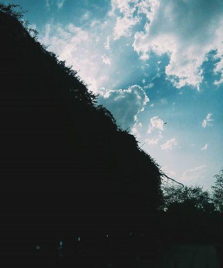 VSCO Vscoapp Leadinglines Vscoart Sunlight Silhouettes Followme Clouds Followers Vscogood Vscogram Vscogrid Vscoweekly InstaVsco Instacam Vscocamphotos Ilobsterit Vscoartist Vsco_daily Vscoworld Sillhouettegrams Vsconature Silhouettegrams Iiframe Bestoftheday cloudporn