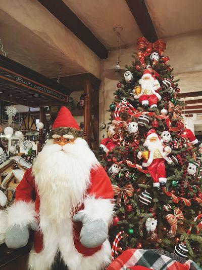 Christmas Christmas Decoration Christmas Tree Celebration Indoors  Tradition Holiday - Event