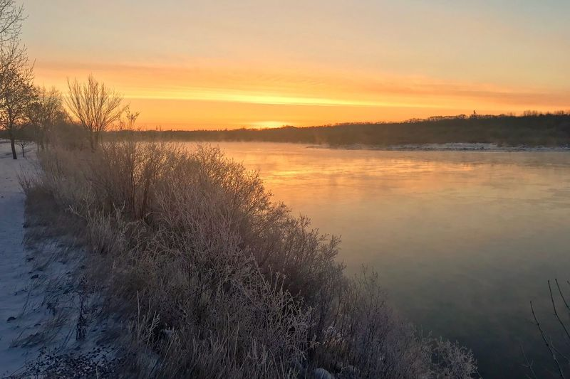 Chilly sunrise! Cold Weather Cold Winter ❄⛄ River Winterscapes Peaceful View Early Morning Mist On Water Frost Saskatoon, Saskatchewan, Canada South Saskatchewan River Frosty Riverbank Winter Sunrise Water Sky Beauty In Nature Scenics - Nature Tranquility Tranquil Scene No People Outdoors Reflection Nature