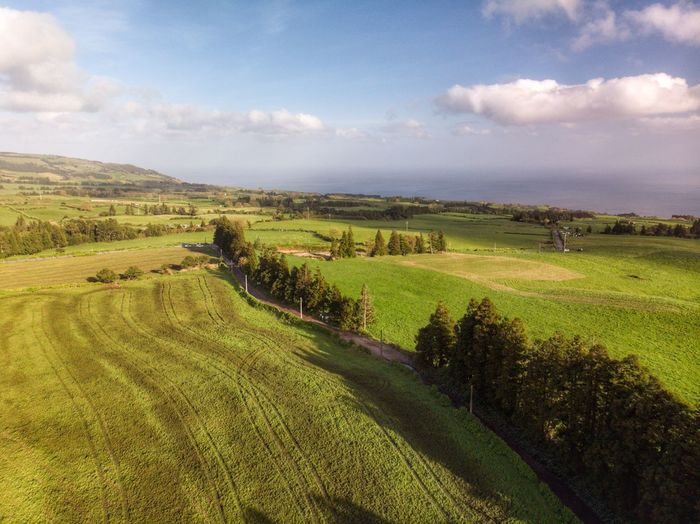 A field at Ribeira das Tainhas Açores - São Miguel Azores Portugal Drone Photograph DJI X Eyeem DJI Mavic Air Tourism Landscape Environment Scenics - Nature Field Land Rural Scene Tranquility Day No People Farm Green Color Beauty In Nature Growth Sky Cloud - Sky Plant Tranquil Scene Agriculture Nature Crop