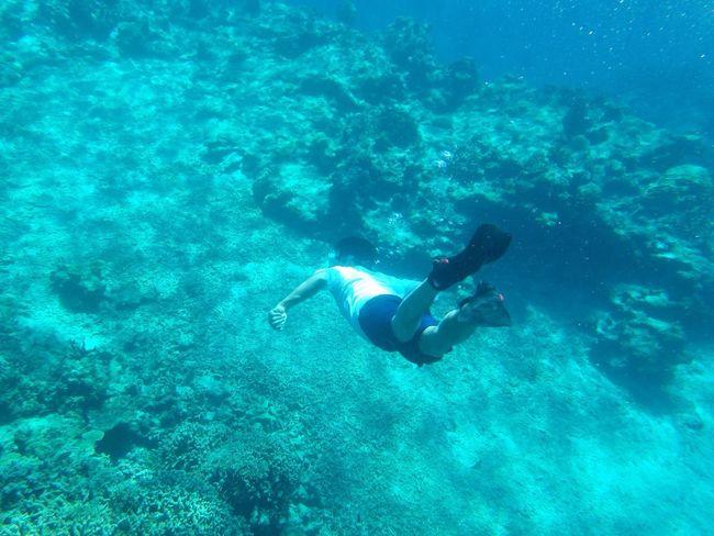 Dive Ishigaki