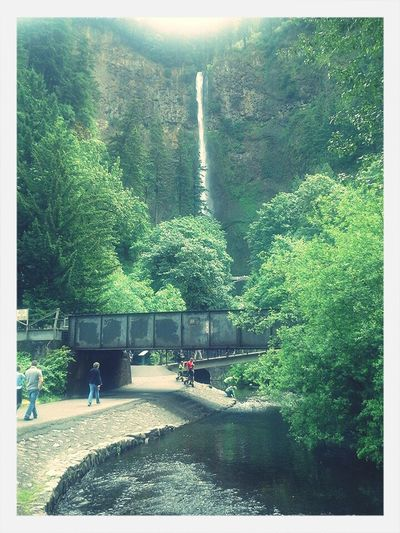 Eye4photography  Beautiful Waterfall Check This Out Beautiful Surroundings