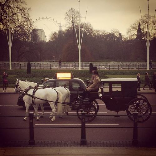 Some people are just so old fashioned! 🐴🐴 London Buckinghampalace