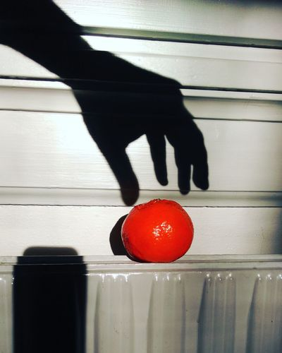 Ghosts like oranges too at my work.What Who Where Red Human Body Part One Person Indoors  Fruit Day Human Hand Close-up People Adult Adults Only One Woman Only BYOPaper!