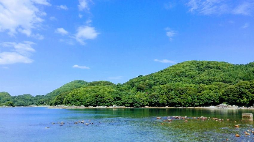 Tree Blue Water Outdoors No People Green Color Tranquility Summer Sommergefühle Japan Hyuga