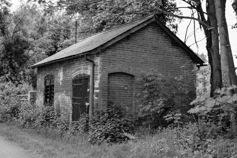 Abandoned Black & White Black And White Brickwork  Building Closed Derelict Foliage Forest Outdoors Overgrown Path Stable Door