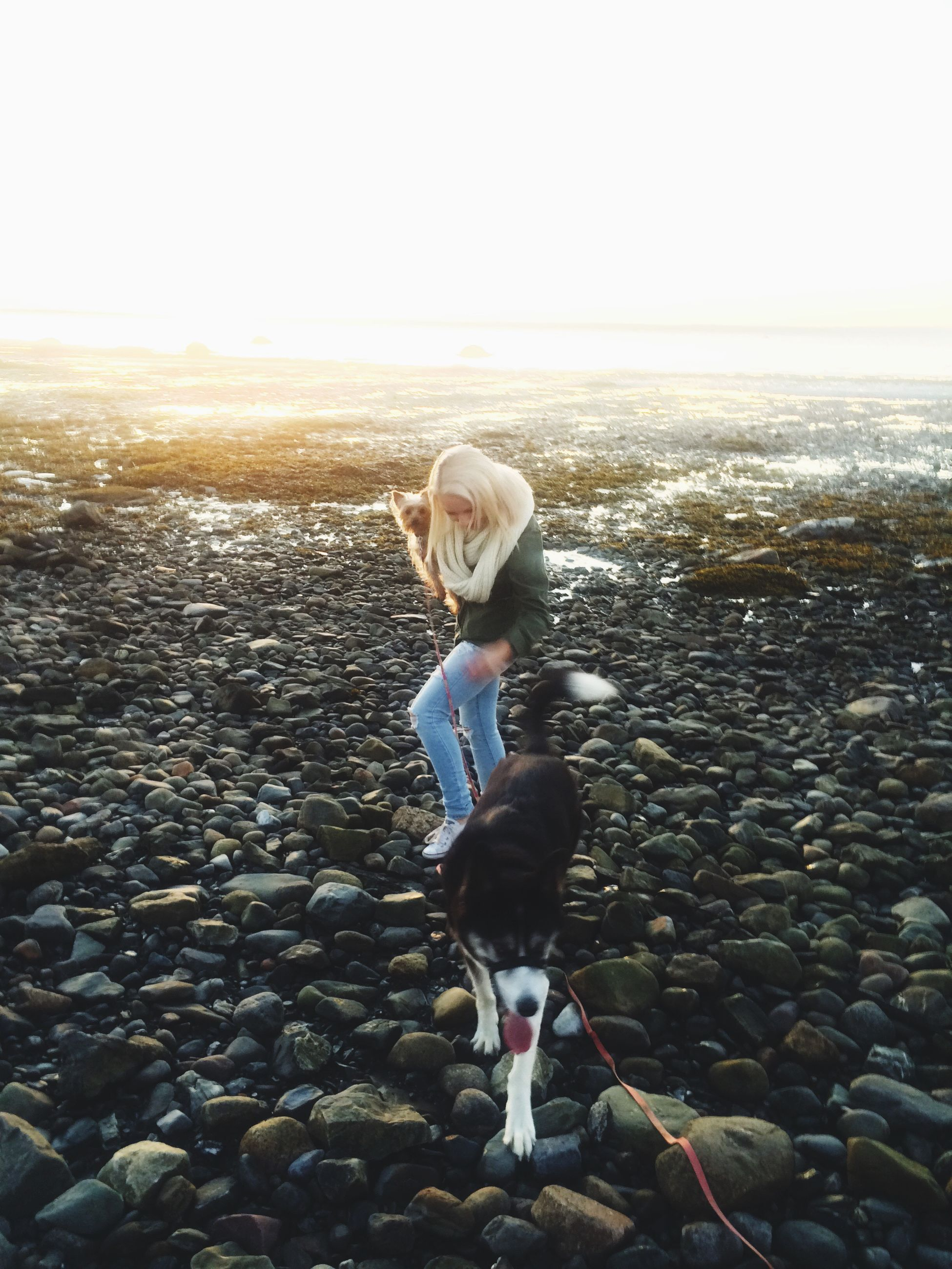 full length, lifestyles, leisure activity, casual clothing, rear view, childhood, boys, standing, elementary age, girls, holding, innocence, sunlight, day, walking, person, hat, outdoors
