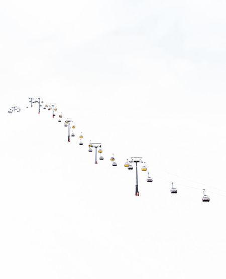 Flock of birds on snow against clear sky