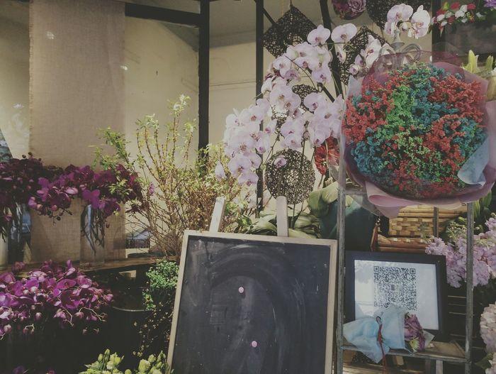 花儿 💐💐 💓💓💓 오랜만에 만나서 기분이 아주 기뻐요. Large Group Of Objects Red Carpet Event Arts Culture And Entertainment Alcohol MenFlower Cold Temperature Freshness No People Variation Flower Arrangement Beauty In Nature Purple Bouquet Indoors  Day Flower Head Pink Color Fragility Nature