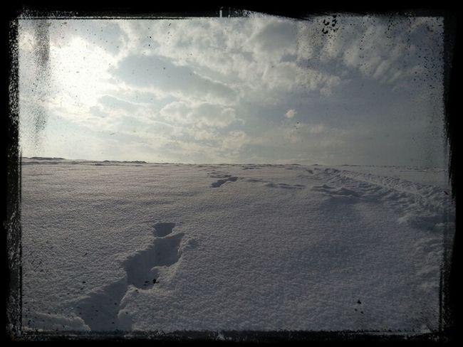 #winter2012/13
