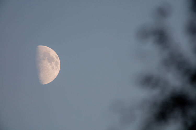 Beauty In Nature Blue Sky Blurry Foreground Close-up Countryside Day Moon Nature No People Outdoors Sweden