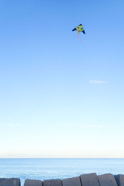 Un aquilone nei pressi del porto di Palermo. Kite Flying Kite In The Sky Kitelife Kites Flying Sky_collection Sky And Sea Sky Photography Sicily Streetphotography Palermo, Italy Freedom Flying Water Sea Beach Childhood Clear Sky Kite - Toy Blue Summer Mid-air Kite Kiteboarding Skydiving