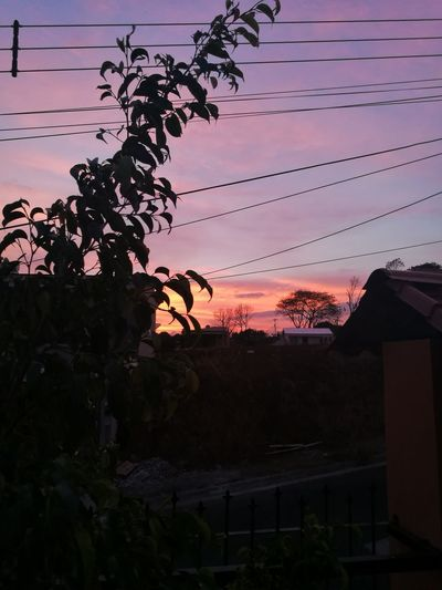 Fgugal Sunset