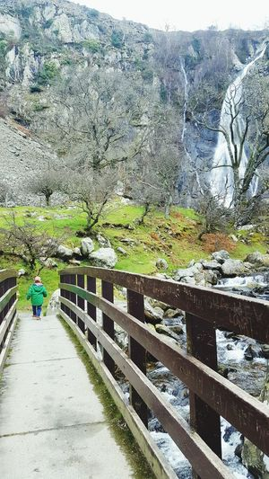 Aber falls Outdoors Nature Day Tree Lifestyles Real People Water Growth Beauty In Nature Men One Person People