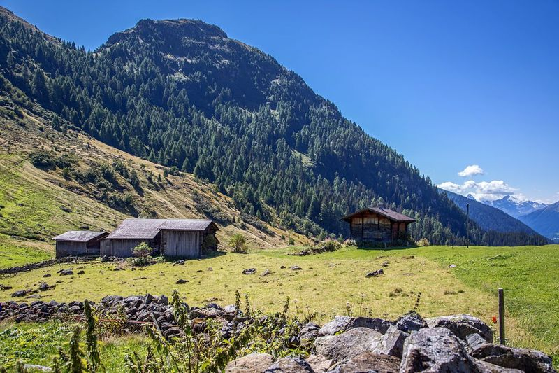 Drusatscha Alp Mountains Forest Alpine Hut Beautiful Alp Easy Hike Alps Plant Built Structure Sky Land Tree Mountain Building Nature Landscape Field Beauty In Nature Day Sunlight Tranquility No People