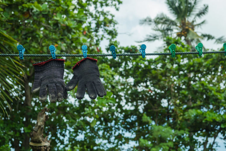 Low angle view of shoes hanging on rope against trees