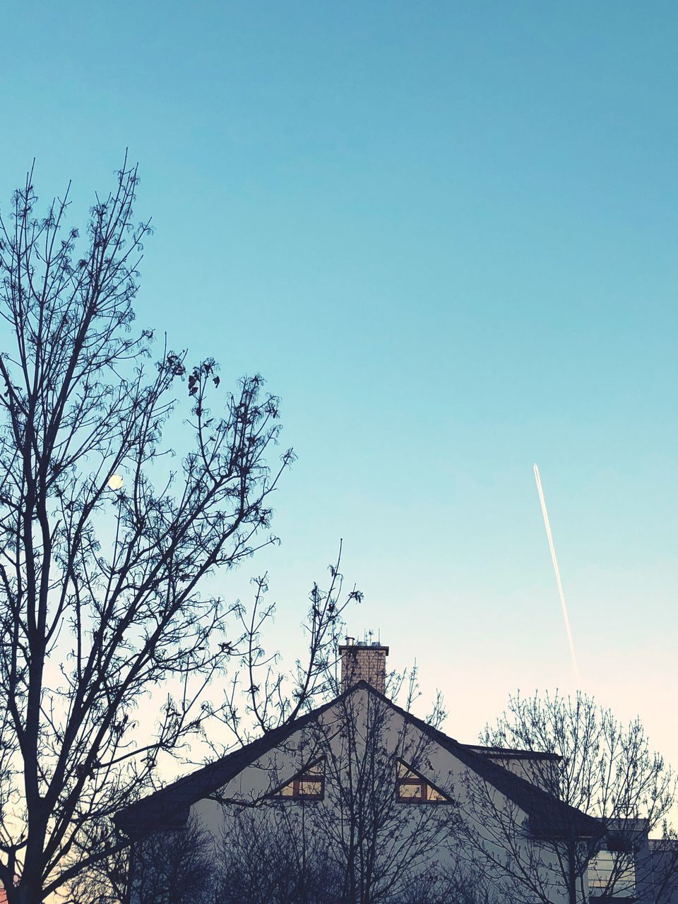 sky, tree, architecture, built structure, building exterior, building, plant, nature, no people, bare tree, low angle view, clear sky, branch, day, copy space, house, blue, roof, outdoors, vapor trail, spire