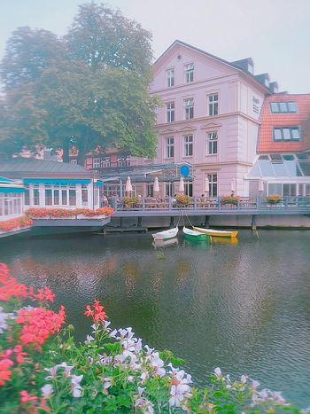 River Riverside Beautiful Weather Beautiful City Boats Hauses Short Trip Flowers Boats Lüneburg Germany Smartphonephotography With A Broken Camera