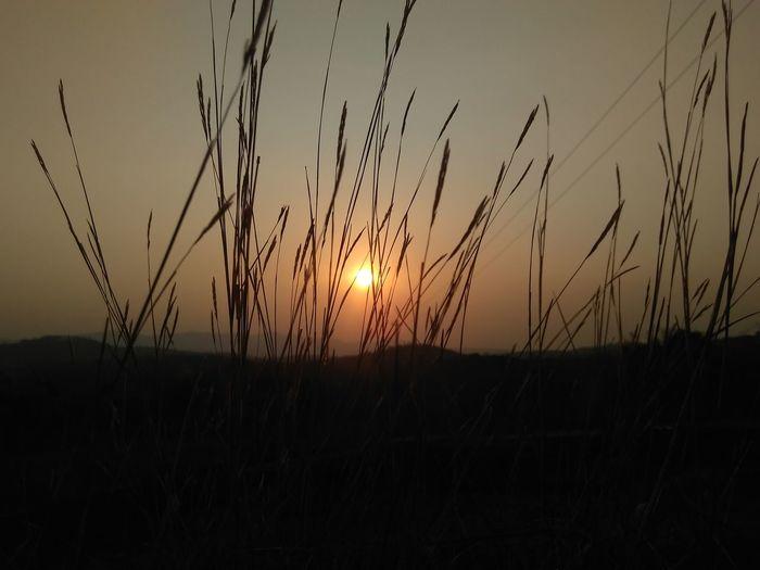 Q Sun set First Eyeem Photo