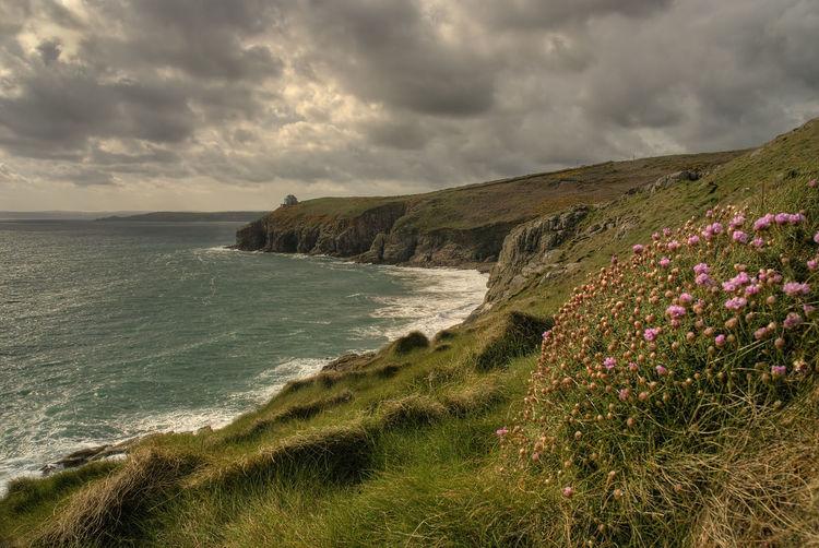 Towards Pra Sands Headland Coast Coastline Cliffs PraaSands Cornwall Flora Flowers Sea Waves Sea Cloud - Sky Nature Beach Beauty In Nature Landscape Scenics Grass Travel Destinations Water