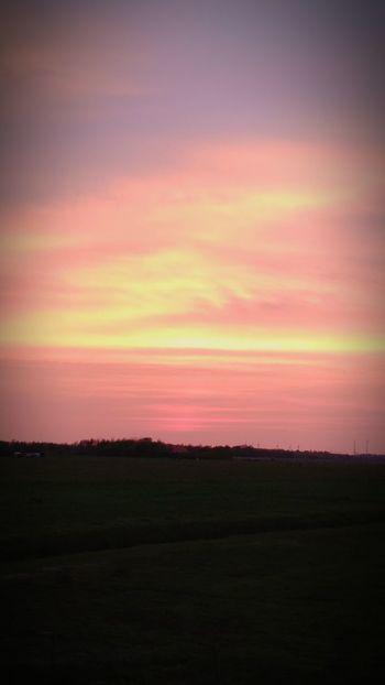EyeEmNewHere Sunset Dramatic Sky Nature Landscape Multi Colored Beauty In Nature Outdoors Cloud - Sky Sky No People Day Sonnenuntergänge Sonnenuntergang Wiesen Wiesengras Wiese  Wiese