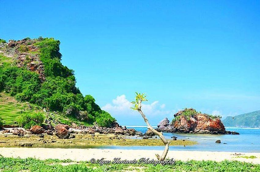 Sunny beach day Agushariantophotography Beach Whitesandybeach