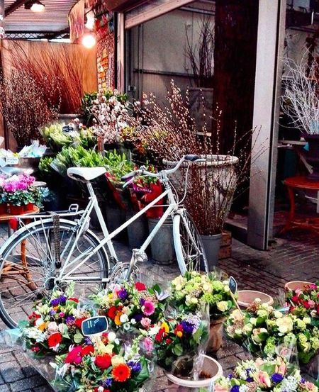 Bike Flowers Amsterdam Celebrate Your Ride