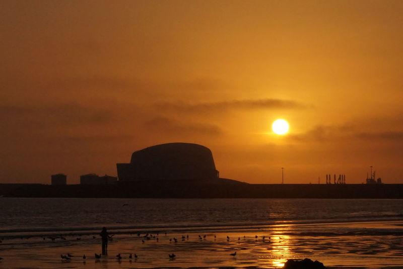 Fabrics Industrial Beach Birds Silhouette Industrialization People Silhouette Sunset