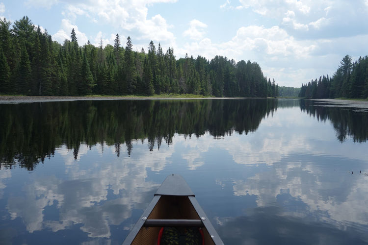 Canoeing in Algonquin Provincial Park, Canada Reflection Tree Water Lake Tranquility Sky Tranquil Scene Plant Beauty In Nature Nature Scenics - Nature Cloud - Sky Day Non-urban Scene No People Idyllic Growth Symmetry Waterfront Nautical Vessel Canoe Canoeing Algonquin Park Algonquinprovincialpark Canada It's About The Journey EyeEmNewHere
