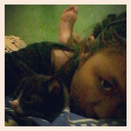 with my kitten Kitten Cat Animallover EyemIndonesia