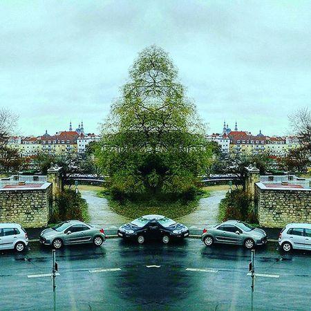 Würzburg Straße Himmel Wolken Regen Baum Auto Main Auge Sureal Street Sky Clouds Rain Tree Car Eye Harvest Herbst Watcher