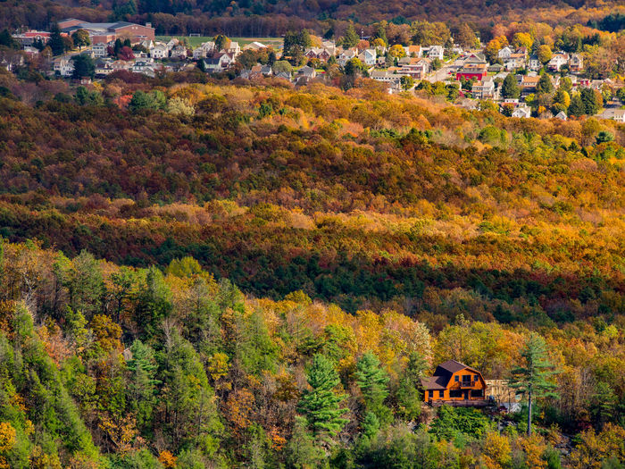 High angle view of trees and houses during autumn