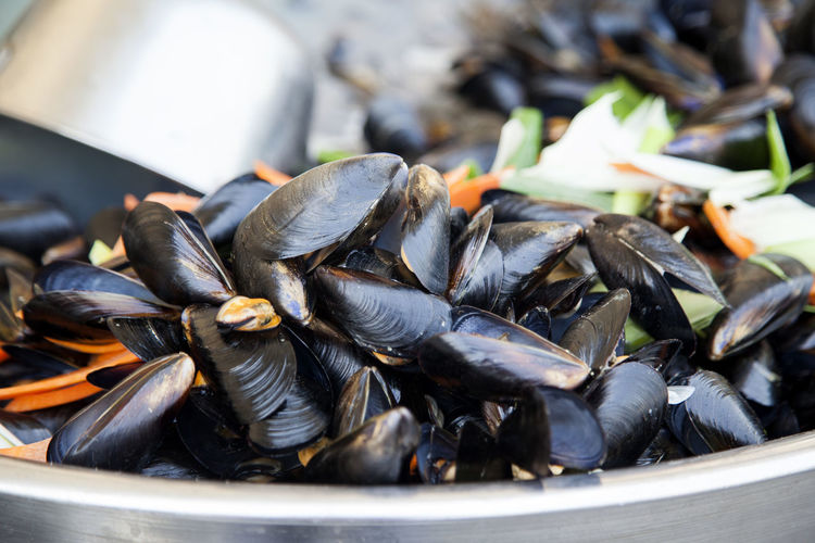 Market of Korean street food Blanched Close-up Day Food Food And Drink Freshness Healthy Eating Horizontal Mussel Mussels No People Outdoors Parboiled Seafood Seafood Shell Sunlight
