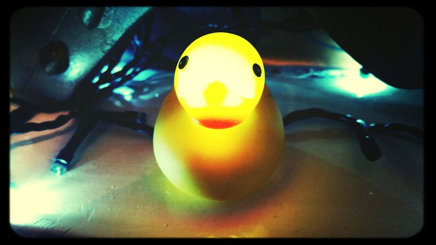 Duck à ľ Yellow Kwack Kwack Ha You Looking For Some Kwack? Happy Face