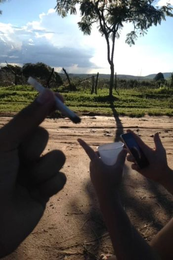 Erva Weed IPhone Goro Weed Life